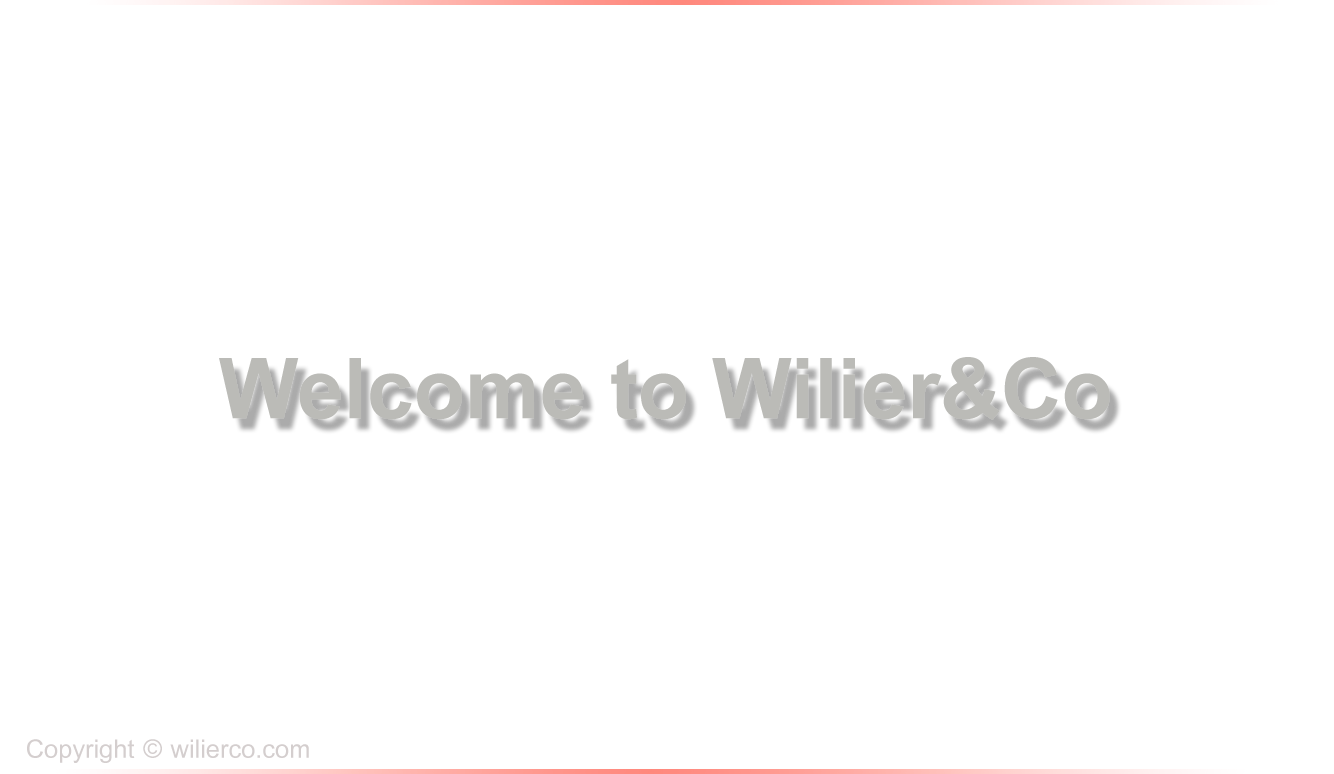 Wilier&Co under construction page